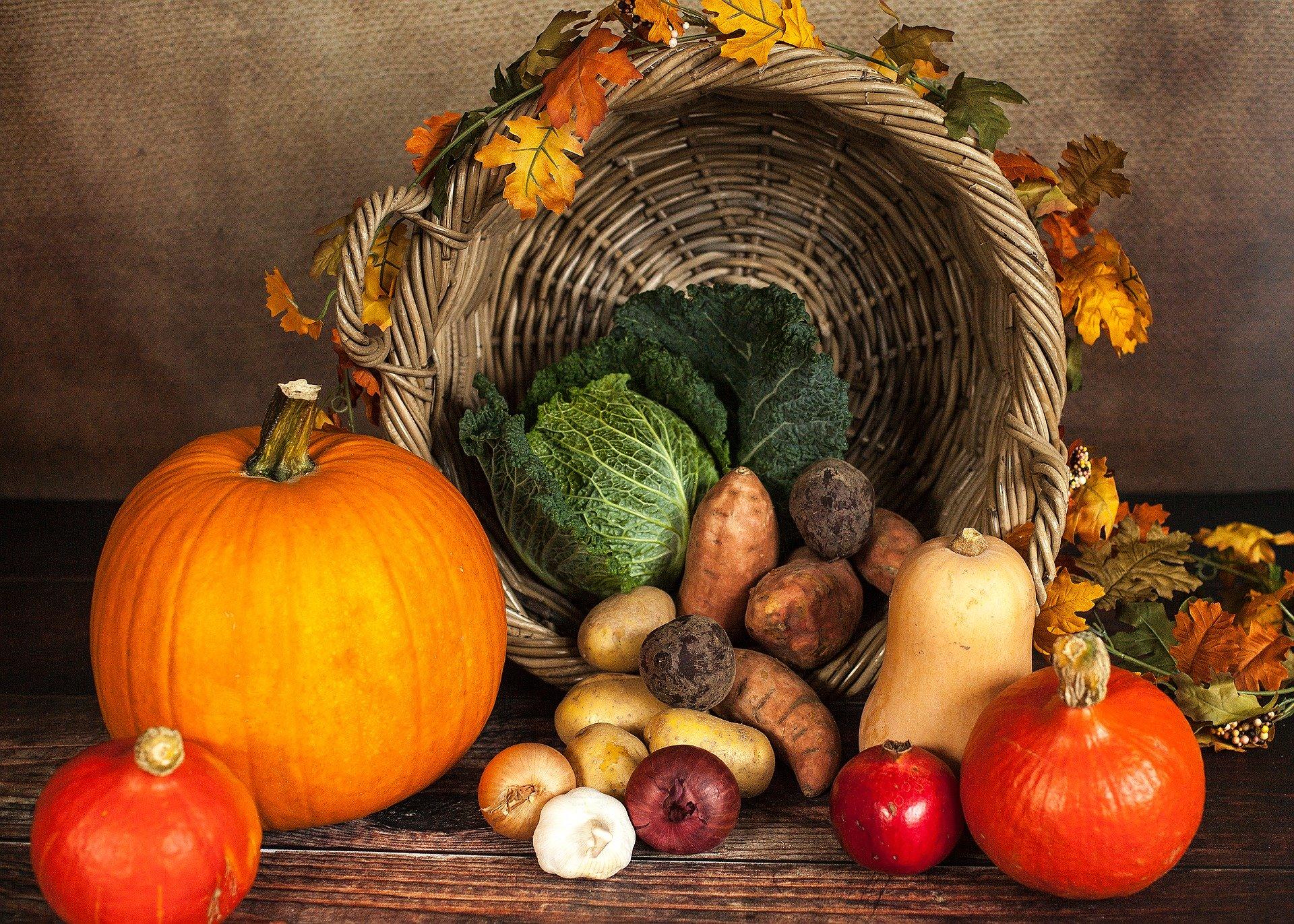 Stilleben mit Kürbissen, Korb, Kartoffeln, Zwiebeln, Wirsing und anderem Gemüse